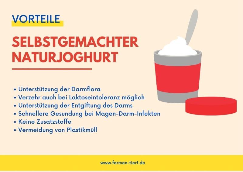 Naturjoghurt gesund