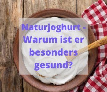 selbstgemachter Naturjoghurt